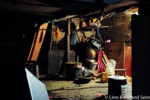 Life on the edges. China-2011.