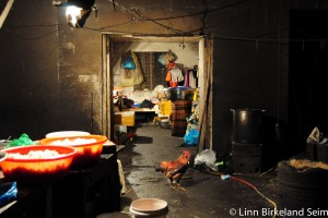 Life on the edges (2). China-2011.