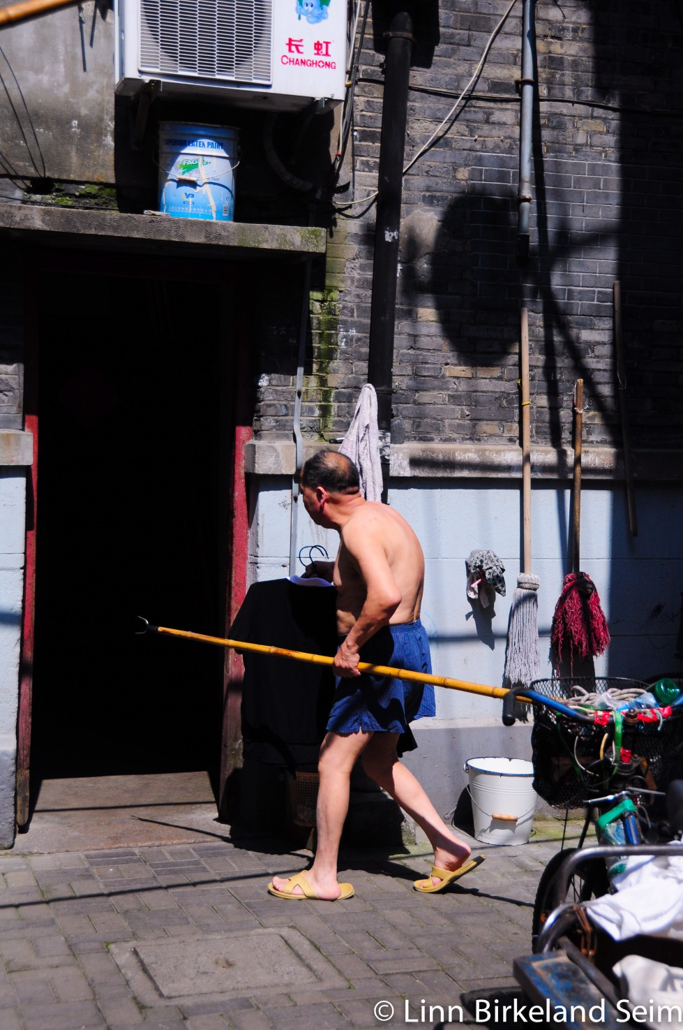 Grooming and brooming. Dongsiwenli, Shanghai - 2013.